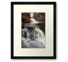 Take Two Framed Print
