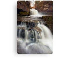 Take Two Canvas Print
