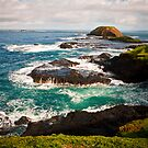 The Nobbies - Phillip Island by melissagavin
