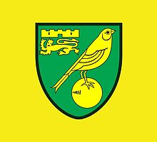 Norwich City FC by Cotza