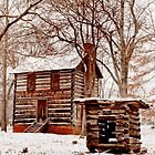 Homestead Cabin by Jay White