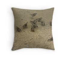 eleven sparrows  Throw Pillow