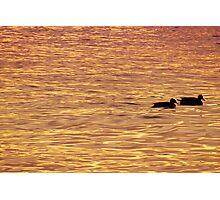 Sentados frente al lago Photographic Print