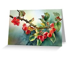 Crab apples after rain Greeting Card