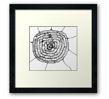 Scribbler Spider Web Framed Print