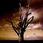 Lighting Tree by perfectdaypro