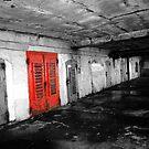 Red door by perfectdaypro