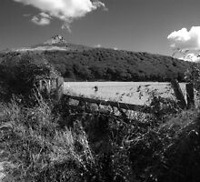 Roseberry topping by Sarah Horsman