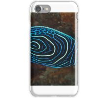 Juvenile Emperor Angelfish iPhone Case/Skin