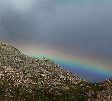 Rainbow Nation (2010) by Gidzz
