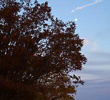 Autumn Moon by crystalseye