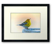 Warbler on a January Morning Framed Print