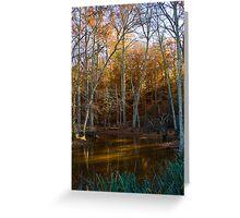 Autumn Swamp Greeting Card