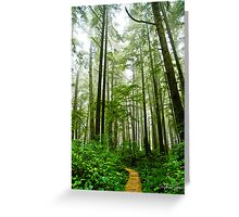 Olympic National Park II Greeting Card