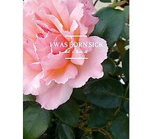 hozier - rose theme Photographic Print
