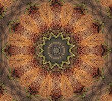 Wooden Mandala by SgtSciFI