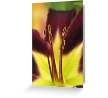Maroon N Yellow Lily Greeting Card