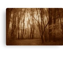 Hush Canvas Print