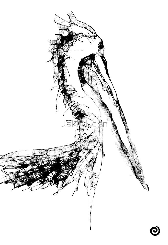 Pelican by Jacqueline Eden