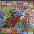 Betta Veils by Kay Hale