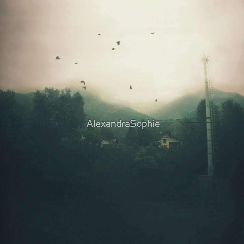 Birds II by AlexandraSophie