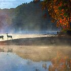 morning of the fawn / autumn at alum lake by R Christopher  Vest