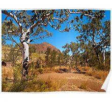 Roadside, Kimberleys, Western Australia. Poster