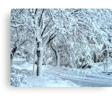 All this snow Canvas Print