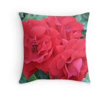 Dedicated to those who perished in Tuscon, Arizona Throw Pillow