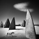 Of canines and monoliths by Adrian Donoghue