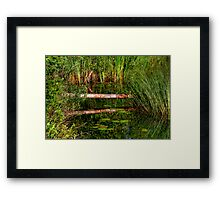 Reflections on the Fen (HDR) Framed Print