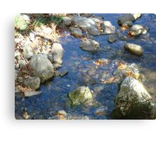Babbling Brook  ^ Canvas Print