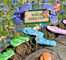 """""""Tread Lightly"""" - flip flops pause at the flowers by John Hartung"""