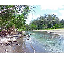 Tropical Estuary - Port Resolution, Tanna Photographic Print