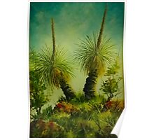 Grass trees in the Australian landscape Poster