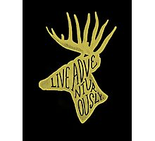Live Adventurously Photographic Print