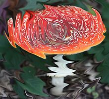Funky Fly Agaric by dilouise
