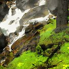 The Rainbow of Vernal Falls by Crystal Fobare