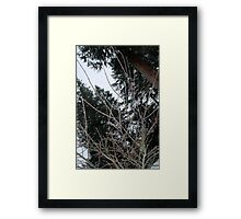 Wet + Cold Framed Print