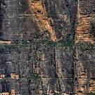 It's A long Way Down - Blue Mountains World Heritage Area - The HDR Experience by Philip Johnson
