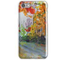 Rustic Road iPhone Case/Skin