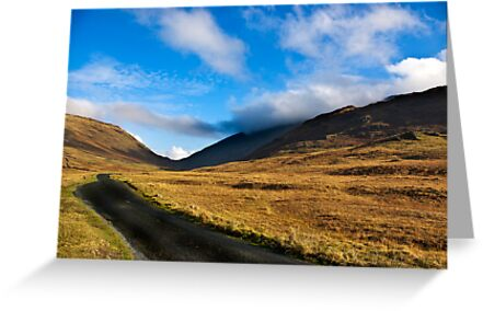 Looking Towards Wrynose Pass by Trevor Kersley