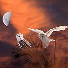 The Moon's Thrall by byronbackyard