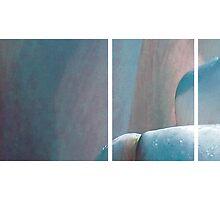 Blue Tulip by Anne Staub