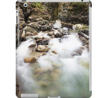 Ueble Schlucht Austria IV iPad Case/Skin
