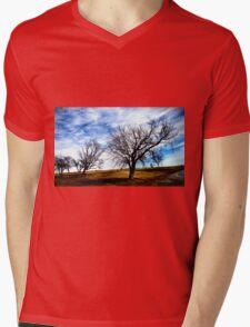 The Gloaming Mens V-Neck T-Shirt