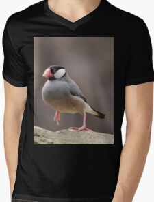 Teenie Tiny Bird Mens V-Neck T-Shirt