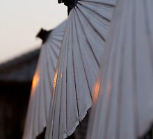 Dusk parasols II by Sam Ryan