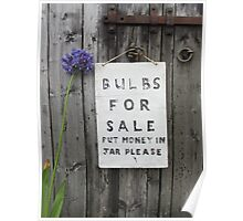 Bulbs for sale Poster