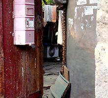 Hutong Doorway, Beijing, China by littleinca
